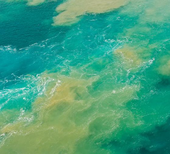 Vertidos en el mar